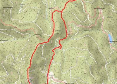 Die Route: von der Niglalm auf die Bodenwies