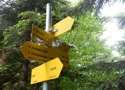 Wanderer-Verteilstelle im Wald