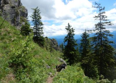 Abstieg Richtung Süden: steil bergab