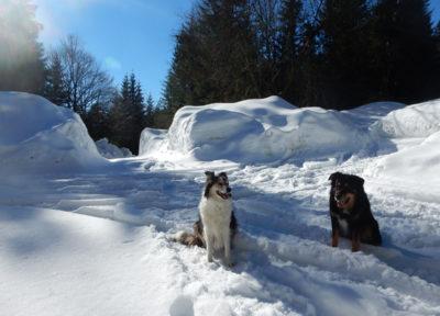 Die Schneewände am Hirschkogelsattel