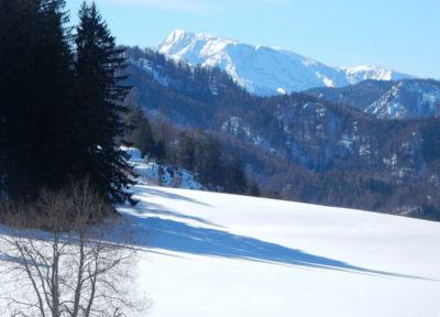 Ausblick auf das Tote Gebirge