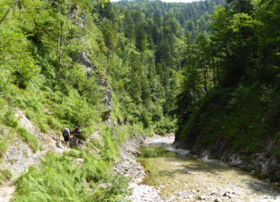 Triftsteig im Hintergebirge