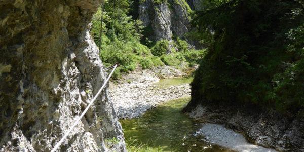 Der Trifftsteig im Hintergebirge