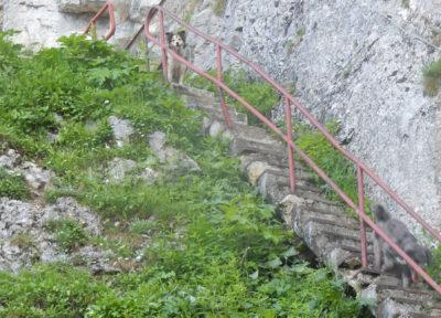 Steile Treppen vor der Höhle
