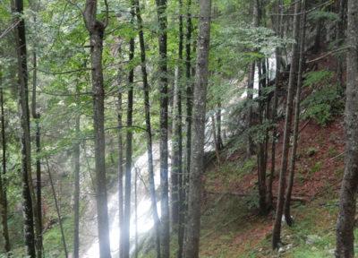 Wasserfall am Arzbach